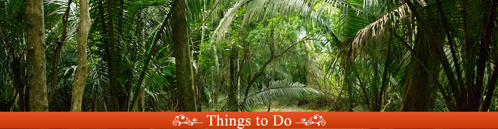 D-victoria-orange-walk-Belize-things-to-do-2